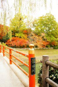tatsuta river